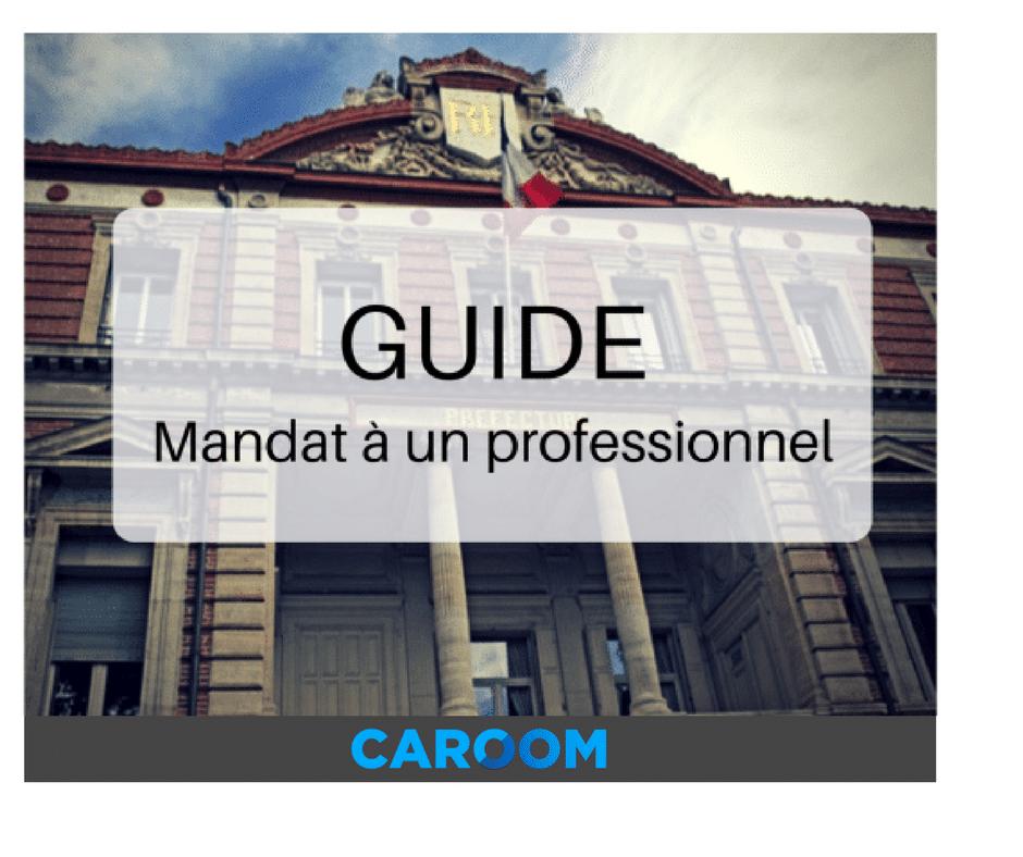 guide caroom mandat à un professionnel immatriculation