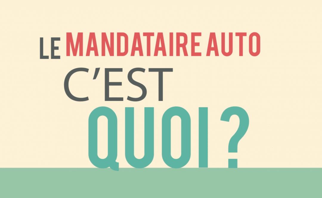 Import Et Mandataires Auto Guide Complet Sur L Importation